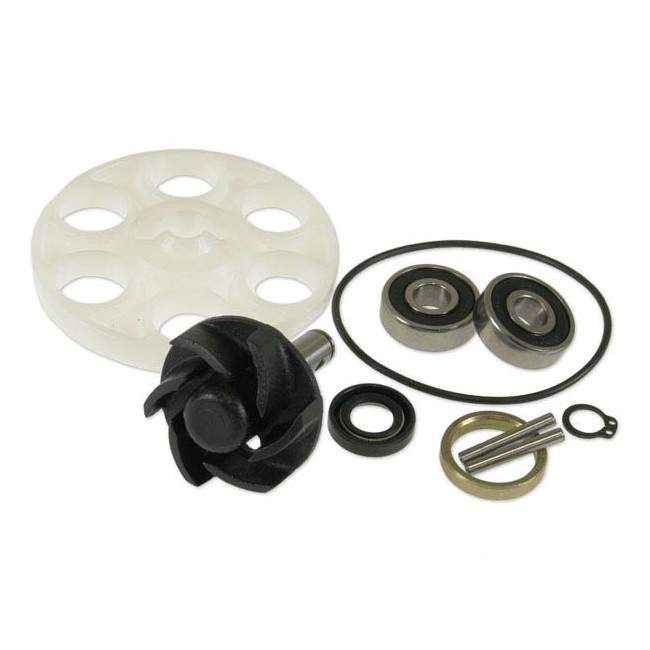 reparaturkit wasserpumpe motoforce minarelli welle lager roller motorradteile. Black Bedroom Furniture Sets. Home Design Ideas
